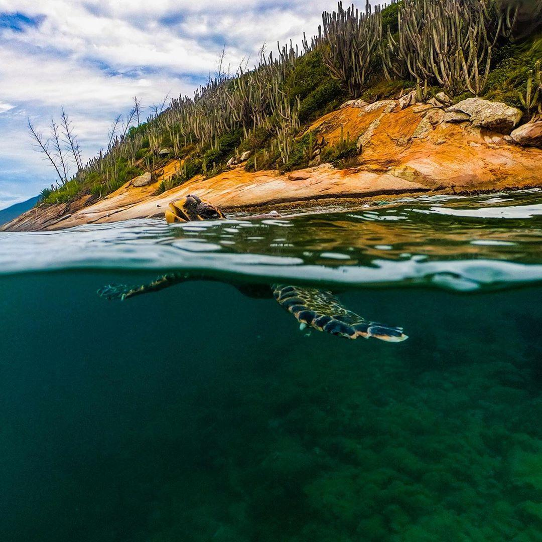 Foto de GoPro na National Geographic Brasil??? SIM!!!